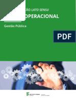 3 Fascículo Da Disciplina_Gestao Operacional