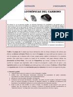 Formas Alotrópicas Del Carbono (1)