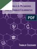 desarrollo_mecanismos_tc.pdf