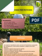 DIAPOS TOXICIDAD DE PESTICIDAS.pptx