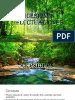 Sucesiones y Fluctuaciones