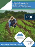 Enfoque Sistémico Para La Valoración Del Riesgo en El Sector Agropecuario Colombiano