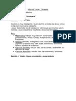Informe Primer Trimestre Maximo