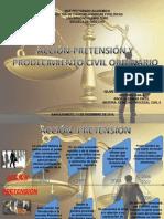 ACCIÒN-PRETENSIÒN Y PROCEDIMIENTO CIVIL ORDINARIO.-