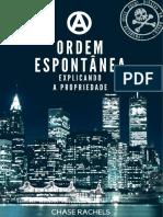 Explicando a Propriedade PDF