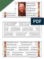 Lama Jigme Rinpoche Long Life 2016 Screen
