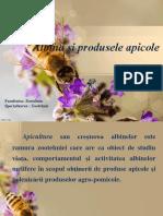Albina Si Produsele Apicole- Zoo