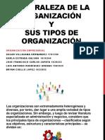 Tipos de Organización - Clase Organización Empresarial