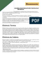 A EFICIÊNCIA DE UMA CALDEIRA FOGOTUBULAR NÃO É UM CÁLCULO
