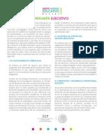 1.-_Resumen_Ejecutivo__1_.pdf