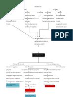 Pathway_of_Diabetes_Mellitus.docx