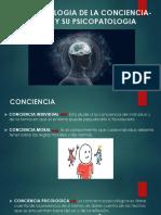 Neurofisiologia  conciencia