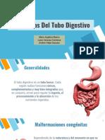 Patología Del Tubo Digestivo