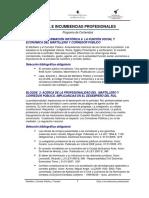 10_Programa _Etica e Incumbencias.pdf