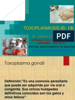Gg - Infecto 2017 13 Toxoplasm (1) PDF 2