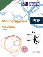 MONOGRAFÍA VOLEY