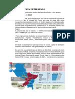 SEGEMENTACION DE MERCADO.docx