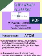 Prof.wiryatun Senyawa Kimia Dalam Sel