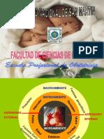 Placenta Madura. (1).ppt