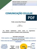 T9 Comunicação Celular