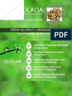 Risna Silvianti_186090200111008.Rekayasa Minyak Atsiri