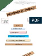 Cours de pathologie