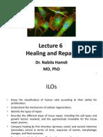 Lecture 6-Repair & Healing_382