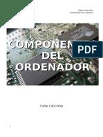 Componentes Ordenador Carlos Calvo