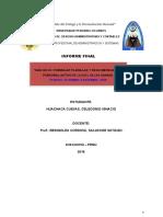 Informe Final Upla