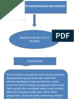 PPT BIOTEKNOLOGI.pptx