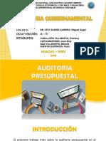 AUDITORIA PRESUPUESTAL (2)