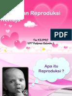 Kesehatan_Reproduksi.pptx