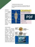 DESINTOXICACIÓN IÓNICA CELULAR.docx