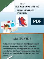 VSD PPT