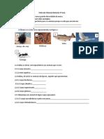 Ficha de Ciências Naturais 5º Ano