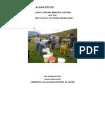 Plan-de-Gobierno-acopia.doc
