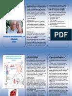 leaflet menopause.pdf