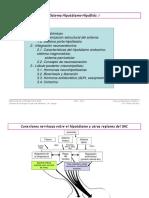 FISIOLOGÍA PRESENTACIÓN Sistema Hipotálamo 25-05-15 Hipófisis (l)