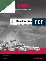cv28.pdf