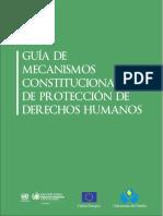 G Constitucionales de Protección de Derechos Humanos
