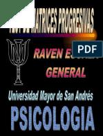 RAVEN GRAL matrices.pdf