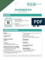 Centro Pre Bellas Artes - Ciclo Intensivo 2019