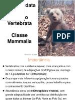 15 Semiologia de Animais Silvestres