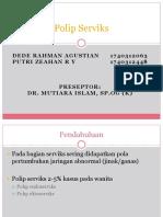 polip servix