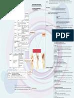 Agstri Dwi Marsela_G2A016088_Mindmap Farmakologi
