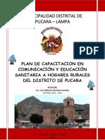 Plan de Capacitacion en Educacion Sanitaria y Gestion de Servicio Pucara 2018