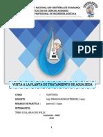 INFORME-DE-QUICAPATA-copia-copia.docx