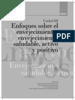 Calvo_2013_enfoques-envejecimiento-maltrato-PUC.pdf