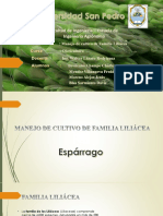 Exposicion de Olericultura nuevo.pptx