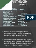 PPT Biospikologi Dan Proses Sensori Motori Kel.1